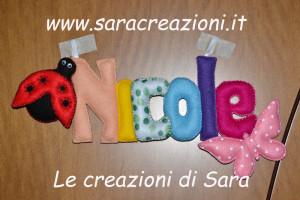 banner Nicole